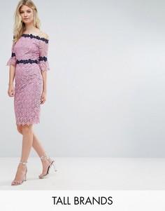 Кружевное платье-футляр с контрастной отделкой Paper Dolls Tall - Фиолетовый