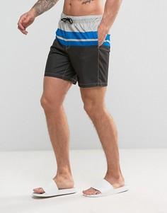 Серые шорты для плавания средней длины с синими полосками ASOS - Серый