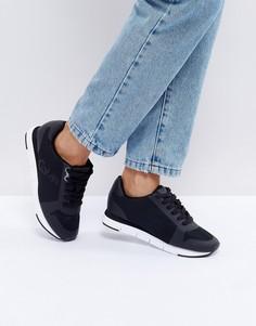 Черные сетчатые кроссовки Calvin Klein Jeans Taline - Черный