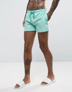 Синие шорты для плавания с логотипом Rose London - Синий