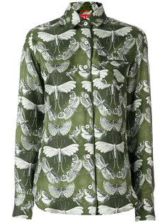 Блузка бабочка купить