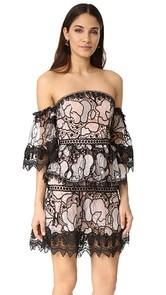 Talulah Stole the Show Mini Dress