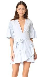 Saylor Phebe Shirting Dress