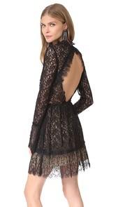 Saylor Amity Pleated Lace Dress