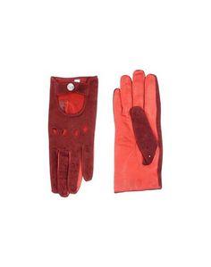 Перчатки GF Ferre