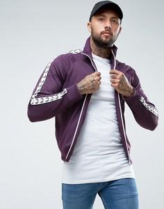 Фиолетовая спортивная куртка с отделкой лентой Fred Perry Sports Authentic - Фиолетовый