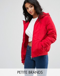 Дутая куртка с капюшоном Noisy May Petite - Красный