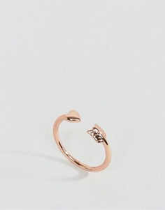 Кольцо Ted Baker - Золотой