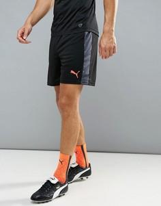 Черные футбольные шорты Puma Football evoTRG 65534806 - Черный