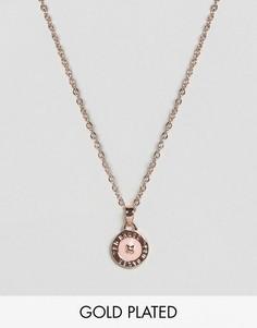 Ожерелье с подвеской-пуговицей и кристаллом Swarovski Ted Baker - Золотой