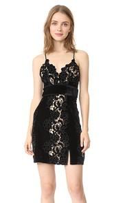 Saylor Logan Embroidery Dress
