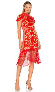 Платье миди rose ceremony - THURLEY