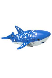 Акула-акробат Redwood