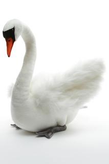 Лебедь белый Hansa