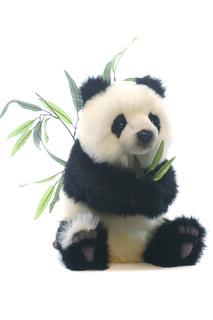 Детеныш панды Hansa