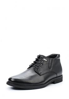 Ботинки классические Zenden Collection