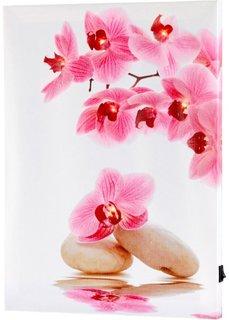 Картина со светодиодной подсветкой Орхидея (розовый/белый) Bonprix