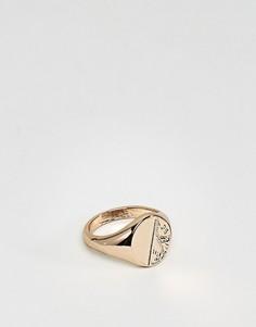 Кольцо-печатка в винтажном стиле Chained & Able - Золотой