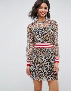Сетчатое короткое приталенное платье с леопардовым принтом и отделкой в рубчик ASOS - Мульти