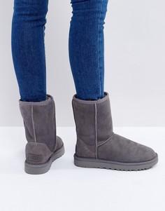 Серые ботинки UGG Classic Short II - Серый