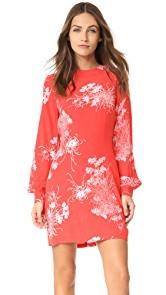 Rollas Garden Dress