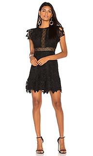 Платье calvin - BB Dakota