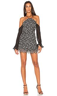 Кружевное мини-платье lia - Karina Grimaldi