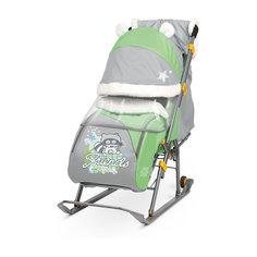 Санки-коляска Ника детям  6, Енот, зеленый/серый Nika