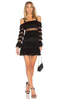 Платье в сеточку brandi - Alexis