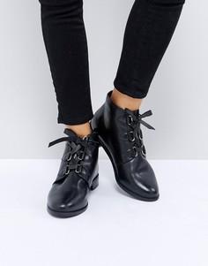 Кожаные ботинки на шнуровке ASOS ALFIRA - Черный