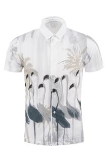 shirt Ruck&Maul Ruck&Maul