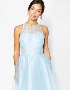 Кружевное платье для выпускного с тюлевой юбкой John Zack Petite - Синий
