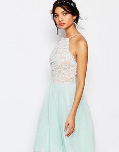 Короткое приталенное платье с кружевным топом и юбкой из тюля Jarlo Petite - Зеленый