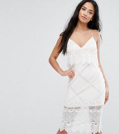 Платье-футляр с укороченным лифом и кружевом с фигурным краем ASOS PETITE - Белый
