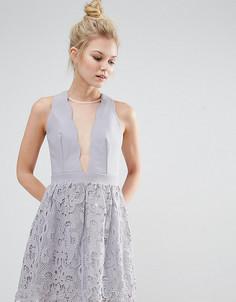 Короткое приталенное платье с сетчатой вставкой и кружевом Little Mistress Petite - Черный