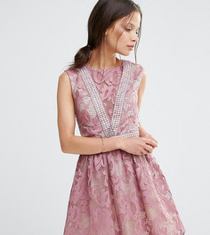 Кружевное приталенное платье без рукавов Little Mistress Petite - Розовый