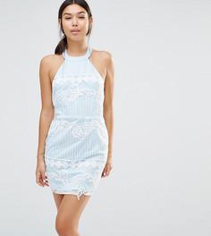 Эксклюзивное облегающее платье из органзы с вышивкой Boohoo - Синий