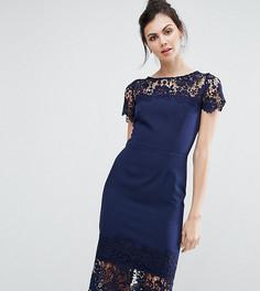 Платье-футляр миди с контрастной отделкой кружевом Paper Dolls Tall - Темно-синий