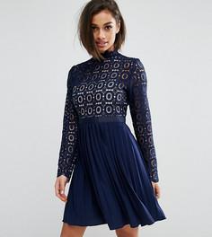 Платье мини с плиссированной юбкой и кружевным топом Little Mistress Petite - Темно-синий