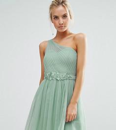 Платье мини на одно плечо с юбкой из тюля и кружевной аппликацией Little Mistress Petite - Зеленый