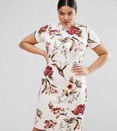 Облегающее платье-футболка с цветочным принтом ASOS CURVE - Мульти