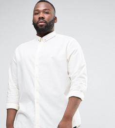 Рубашка скинни в золотистый горошек с планкой на воротнике Noose & Monkey PLUS - Белый