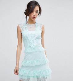 Сетчатое платье в горошек с рюшами True Decadence Tall - Зеленый
