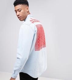 Джинсовая рубашка навыпуск с принтом на спине ASOS TALL - Синий