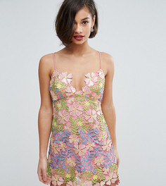 Платье мини с цветочной аппликацией ASOS PETITE SALON - Мульти