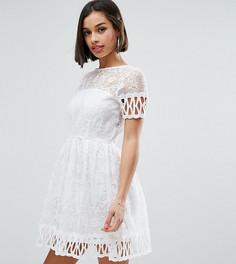 Короткое приталенное платье с вышивкой Boohoo Petite - Белый