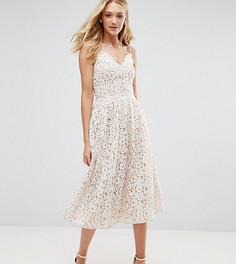 Короткое приталенное платье из премиум-кружева для выпускного с пышной юбкой Little Mistress Tall - Белый