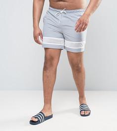 Серые шорты для плавания средней длины с сетчатыми вставками ASOS PLUS - Серый