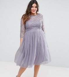 Платье мини с кружевным лифом и юбкой из тюли Little Mistress Plus - Серый