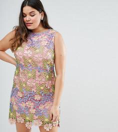 Кружевное платье-трапеция мини ASOS CURVE SALON - Мульти